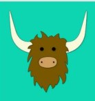 The Barrel Has No Bottom : Yik Yak Review: Another Anonymous Social Media Site Perfect for Cyberbullying & It's Worse Than Ask.fm