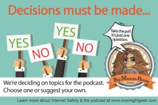POLL: Help us pick Internet Safety topics for the podcast